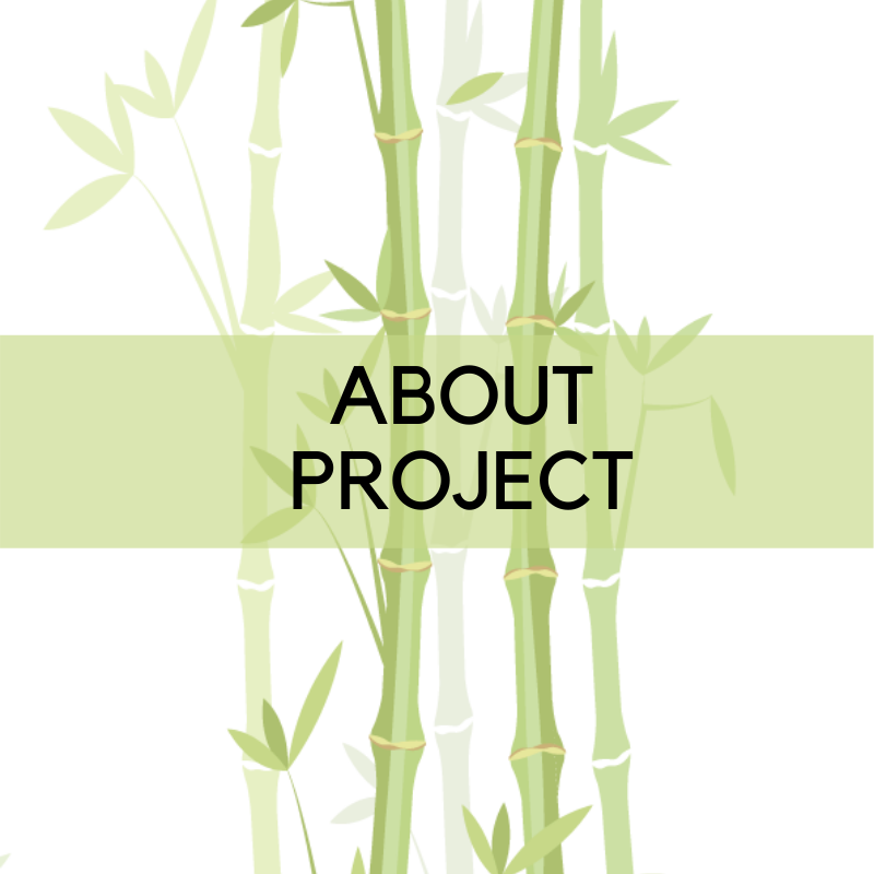 About Project
